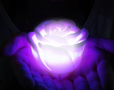 ML Rose