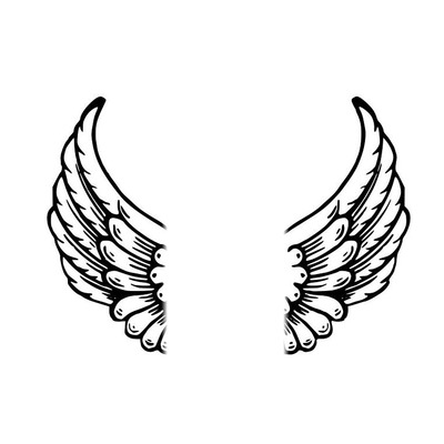 mes ailes