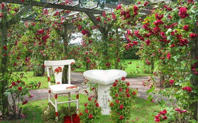 Coeur dans le jardin