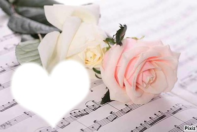 Deux roses sur des notes de musiques*