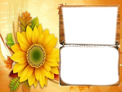 sunflower frames - Sunflower Picture Frames