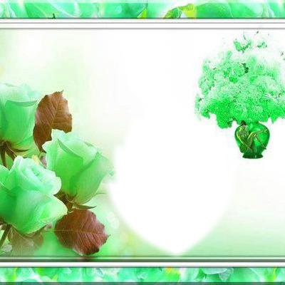 cadre vert avec roses