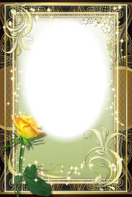 Cadre - rose jaune