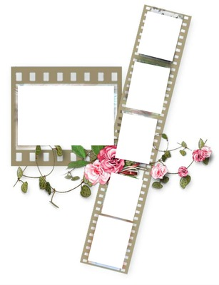 6 film frames with pink roses-hdh 1