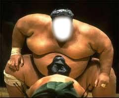 QUI TU VEUX sumo et l'autre tous petit