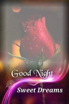 renewilly good night