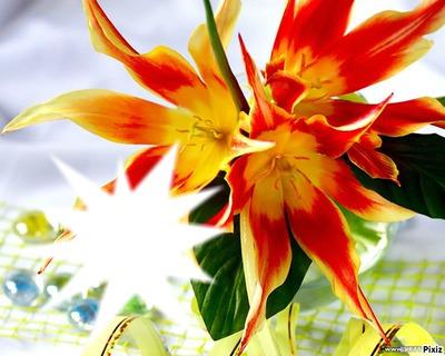 *parfum de fleurs*6*