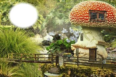 Fairy house !