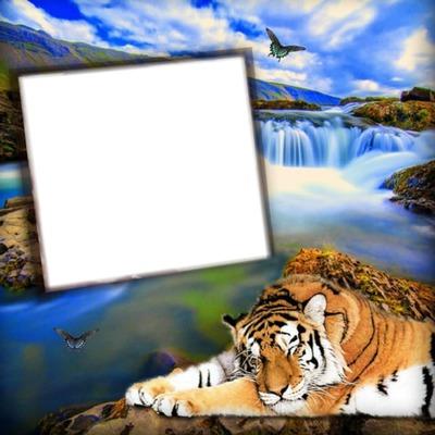 Nature avec un tigre