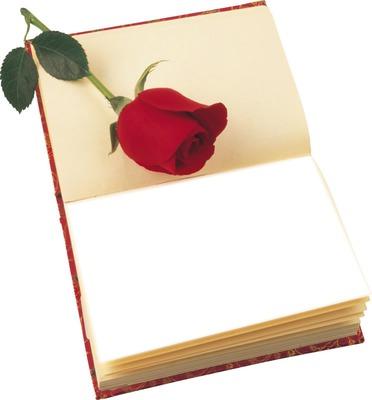 livre rose rouge