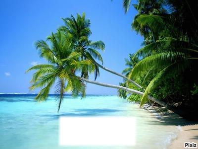 plage de rêve