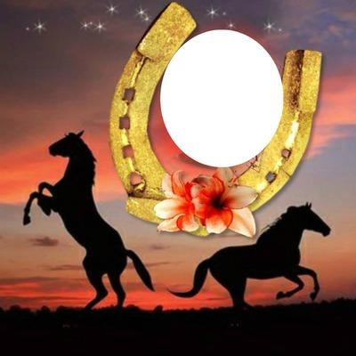 2 chevaux avec un fer à cheval 1 photo