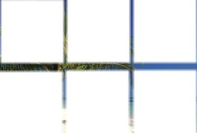 cadre 6 photos - plage palmier