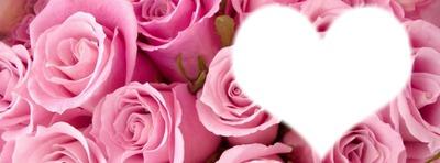 couverture fleuri