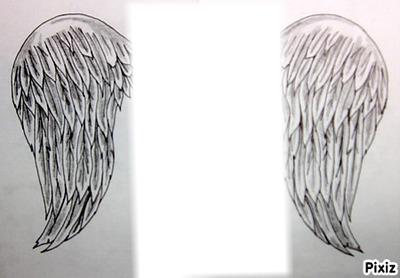 Montage photo aile d 39 ange pixiz - Ailes d ange dessin ...