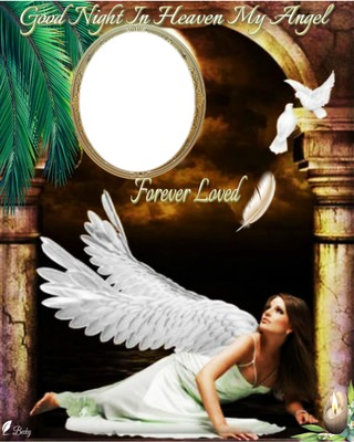 GOOD NIGHT ANGEL
