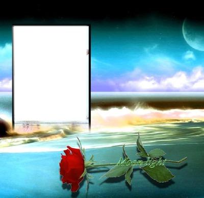 mer et rose