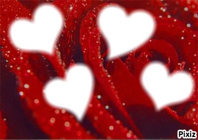les 4 coeurs