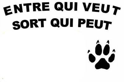 pancarte chien