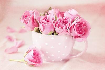 Rosa-Rosen-Tasse-Love