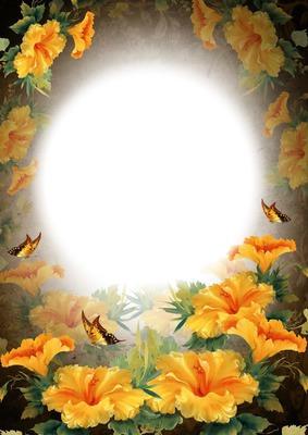 Papillons - hibiscus - fleurs jaunes