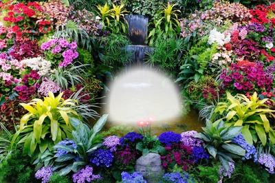 Photo montage Flower Garden - Pixiz