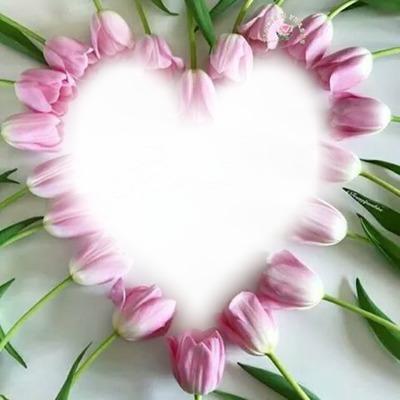 Coração Rosa!!