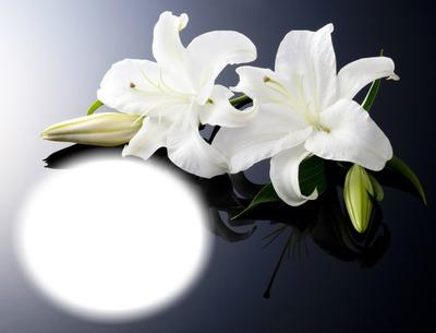 Fleurs-lys