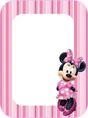 mini rosa 3