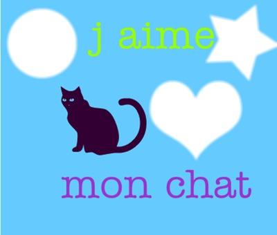 j aime mes chats ..