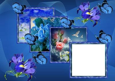 Cadres fleurs papillons