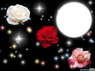 *3 ROSES*