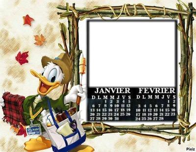 JANVIER FEVRIER DONALD DUCK 2013