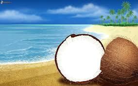 Kokos na plázi!