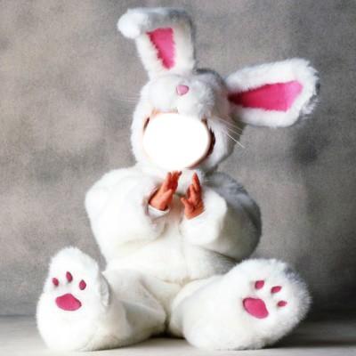 Bébé lapin !!♥♥