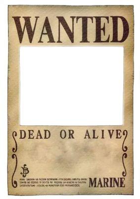 Wanted De One Piece