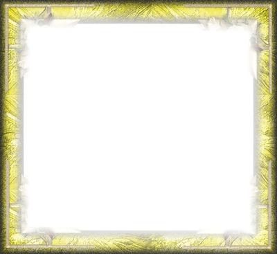 cadre jaune  fleur