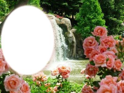 Cadre cascade avec des roses roses