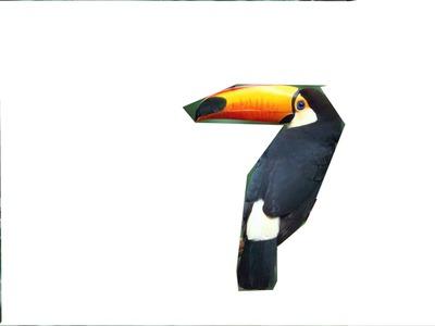 Cadre toucan