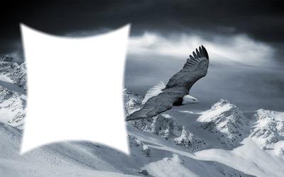 Eigenes Design 12 Adler