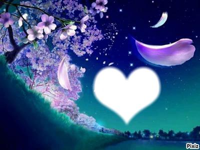 Nuit d'amour