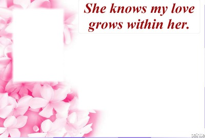 3 love grows baby