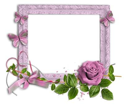 montage photo cadre fleur rose pixiz. Black Bedroom Furniture Sets. Home Design Ideas