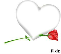 coeur + rose rouge + 1 photo