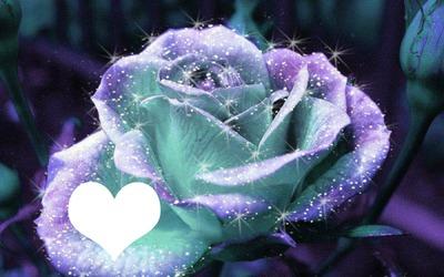 purple glitter rose