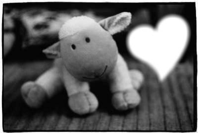 amour du vache