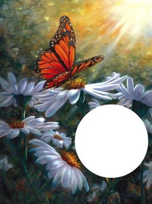 papillon fleurs laly