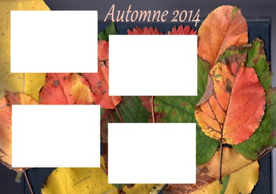 Automne 2014. Cadre 4 photos