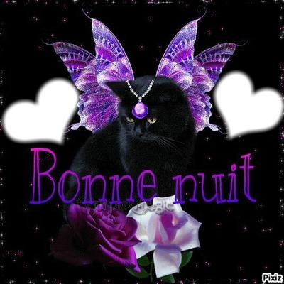 Bonjour  - Page 3 545606_24036