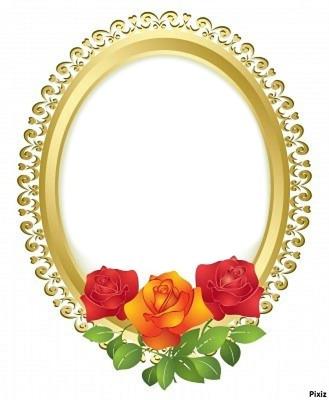 cadre aux roses 1 photo